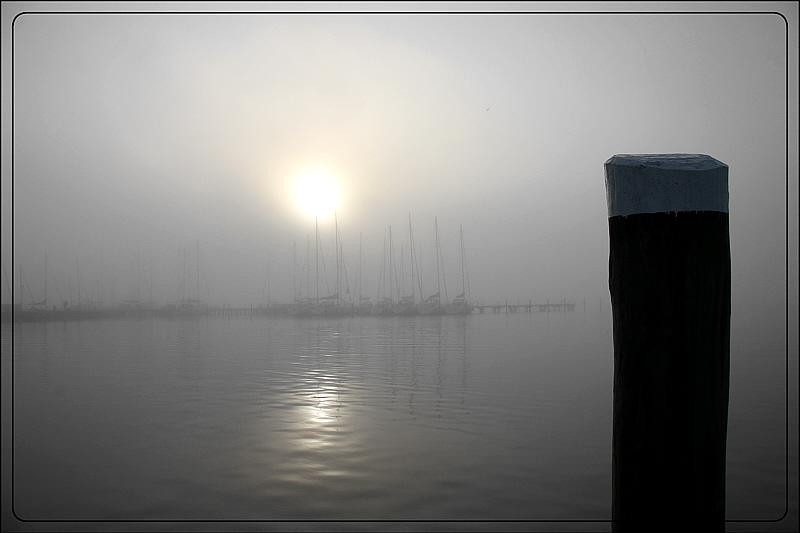 in Nebel getauchter Morgen