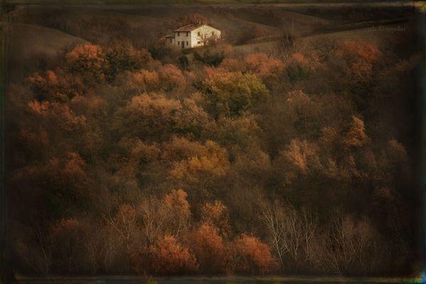 In ricordo di Carla Ippoliti - L'autunno della nostra campagna, 2010