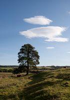 in Schottland-