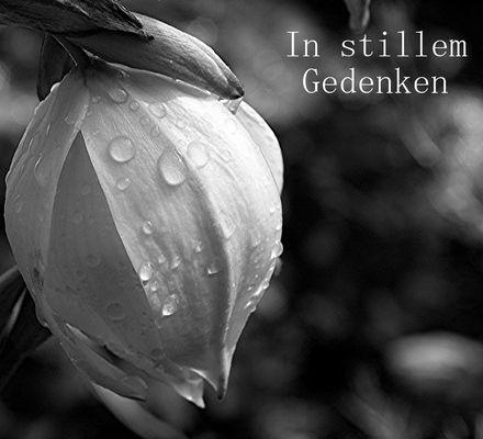 In stillem Gedenken