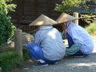 IN THE KANAZAWA GARDEN