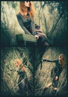 In the woods - ©2014 Jan Pollack