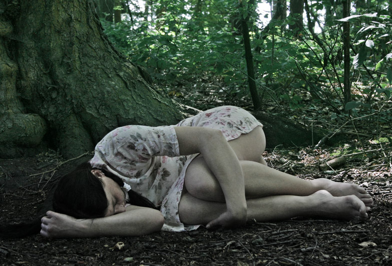 [ in the woods ]