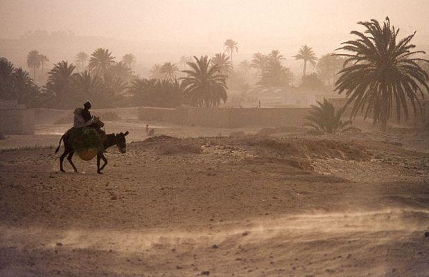 In Tunesien am Rand der Sahara kehrt ein Ehepaar auf dem Esel heim