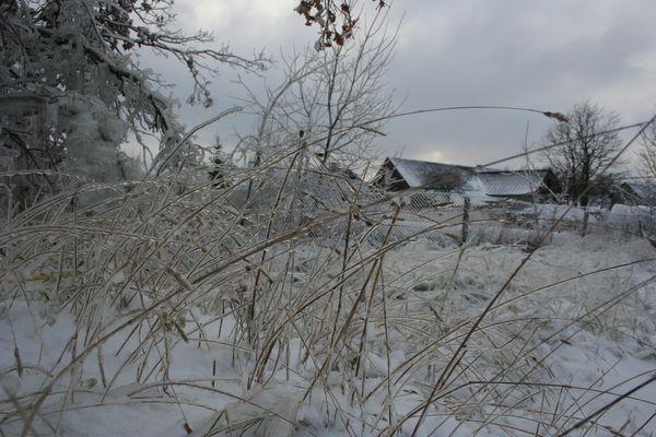In winter 1