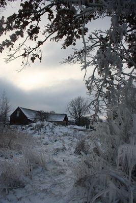 In winter 2