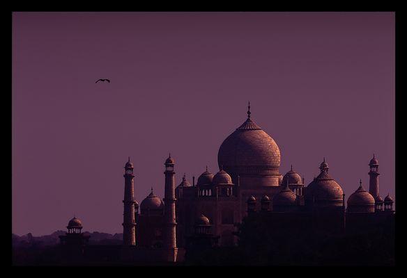 India - Taj Mahal #1