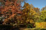 INDIAN SUMMER, im Schlosspark............., ein Feuerwerk an Farben........