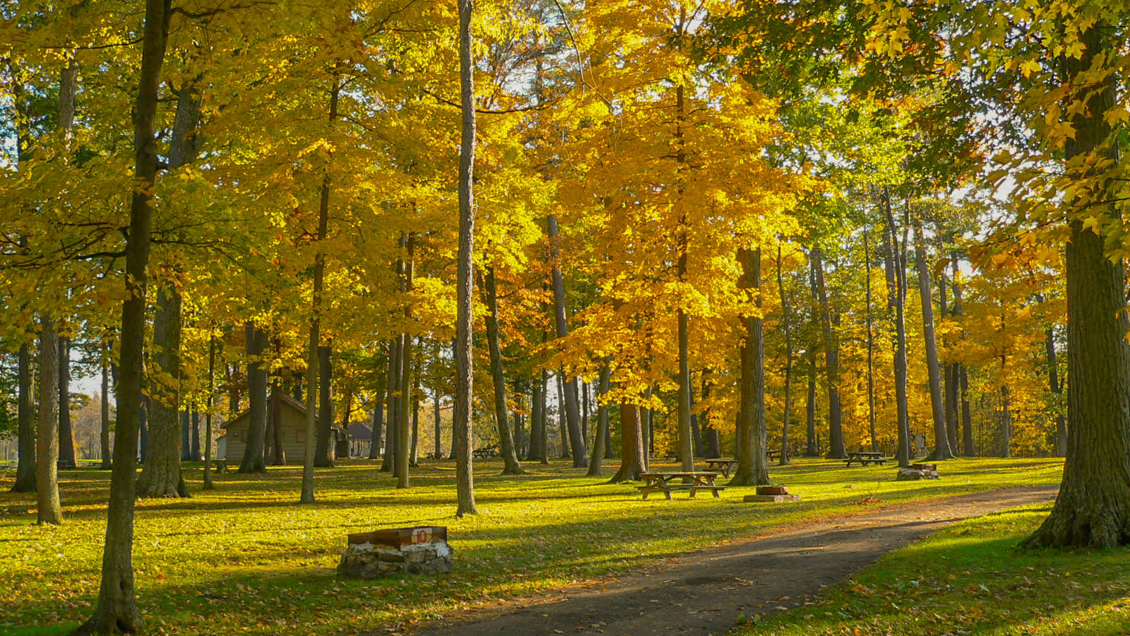 Indian Summer in einem Statepark
