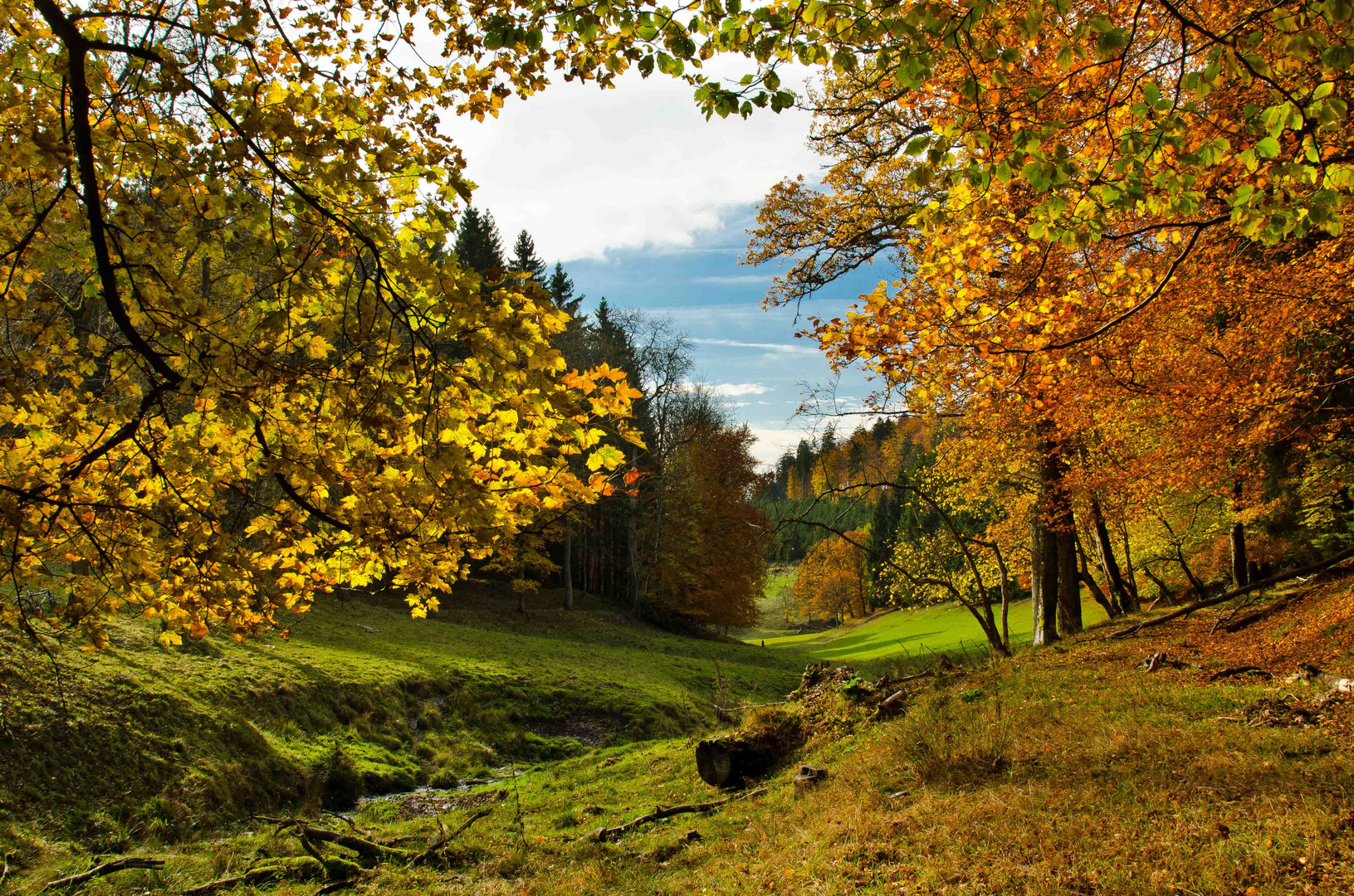 Indian Summer in Wittgenstein