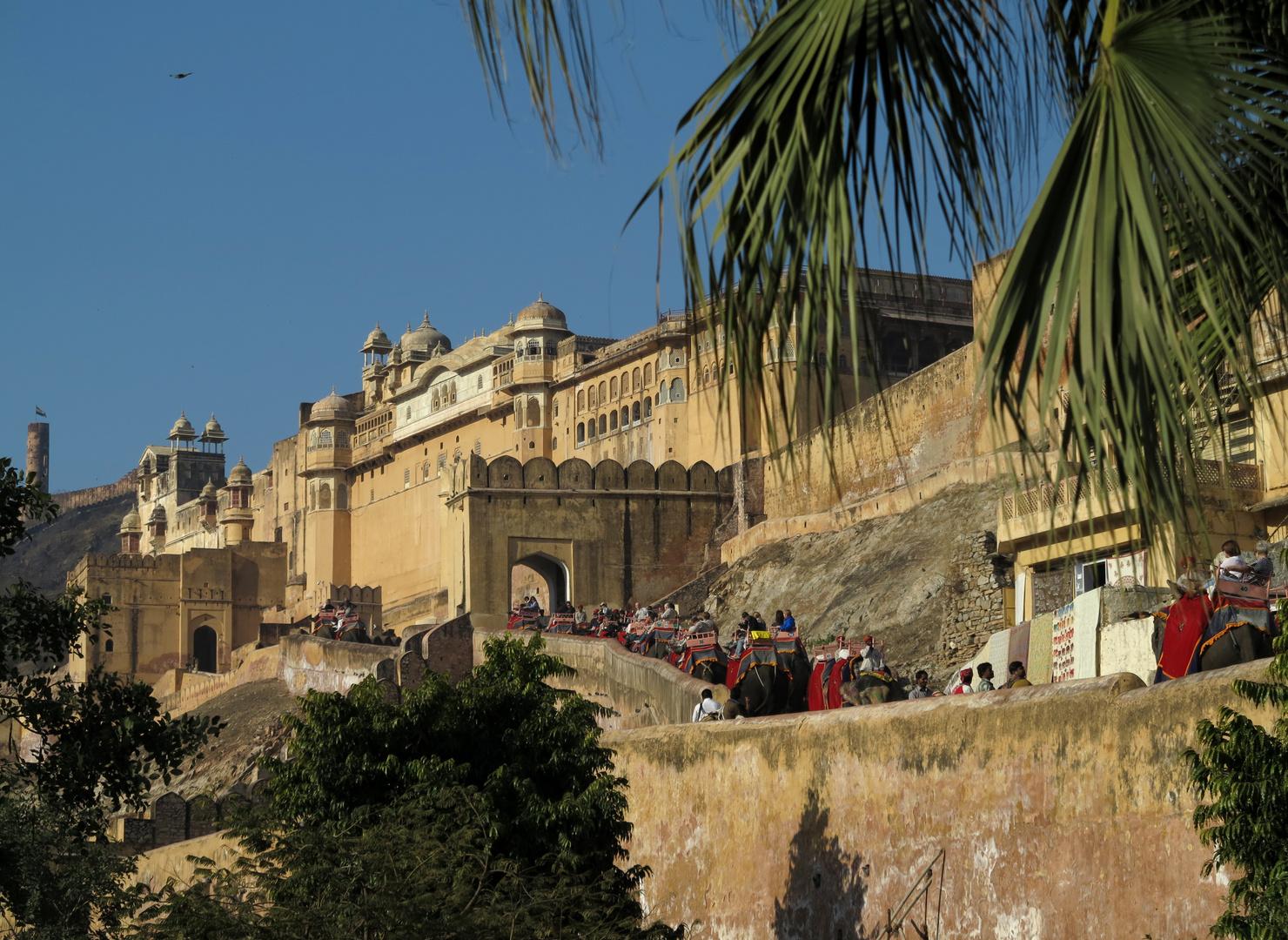 INDIEN - Amber Palace mit viele Elefanten