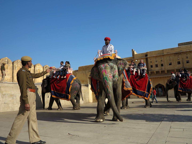 """INDIEN - Polizist """"spricht"""" mit dem Elefanten"""
