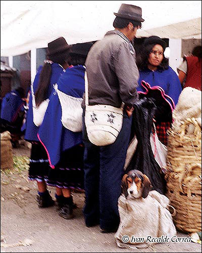 INDIOS DE COLOMBIA