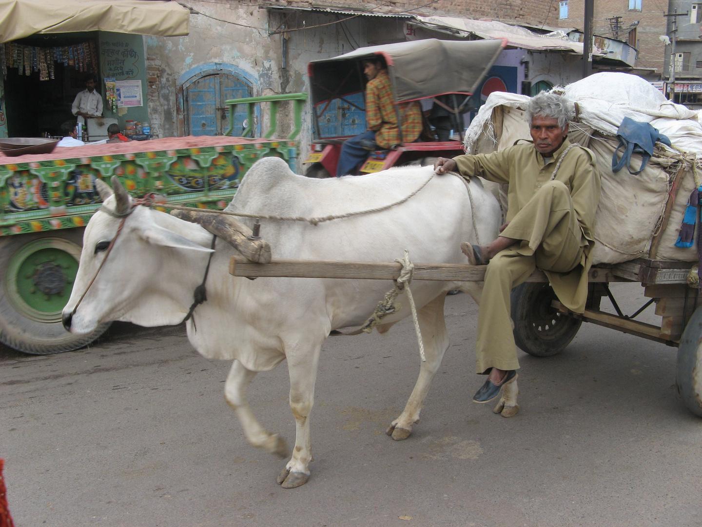 indisches Verkehrsmittel