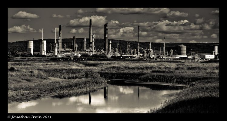 Industry and Nature Reserve