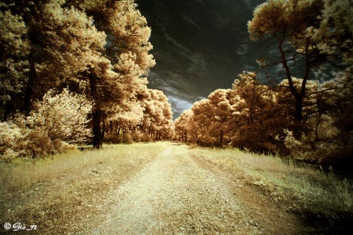 Infrared trip