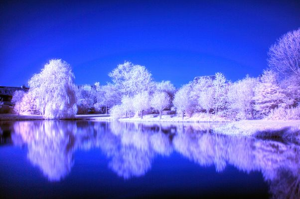 Infrared with Nikon D700