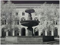 Infrarotbild Universität München
