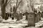 Infraroter Friedhof
