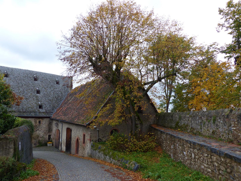 Innenhof Schloss Lichtenberg