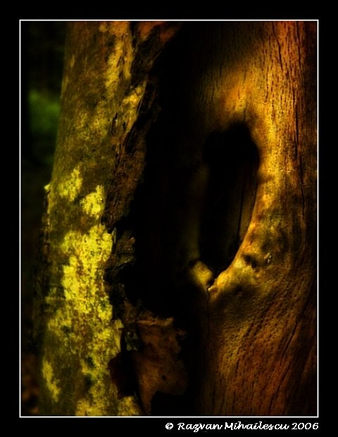Inner core revealed