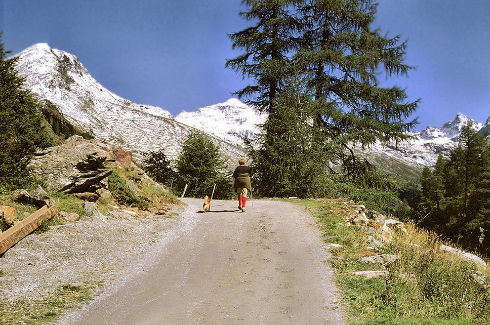 Innergschlöß 2 in Osttirol