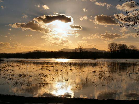 Innondation en Alsace