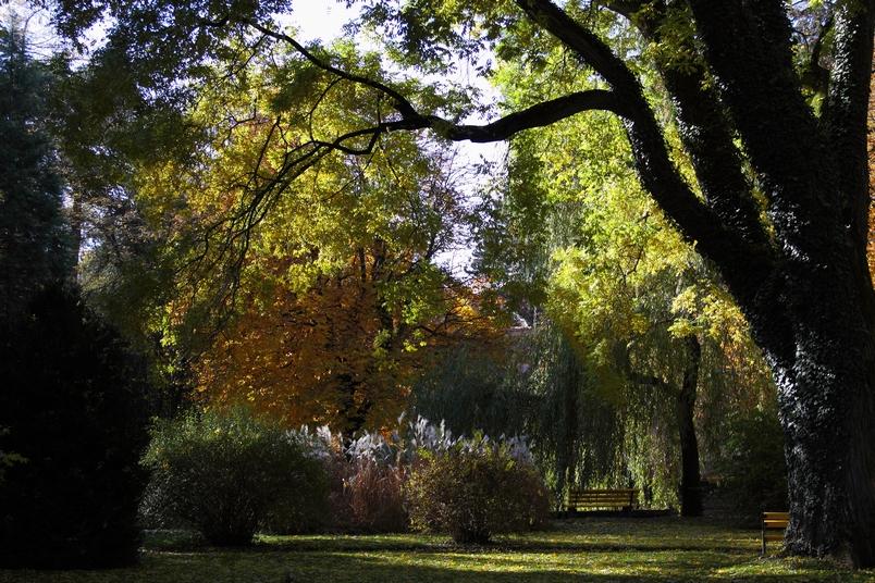 Innsbrucker Hofgarten im Herbst 2