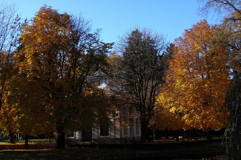 Innsbrucker Hofgarten im Herbst 3