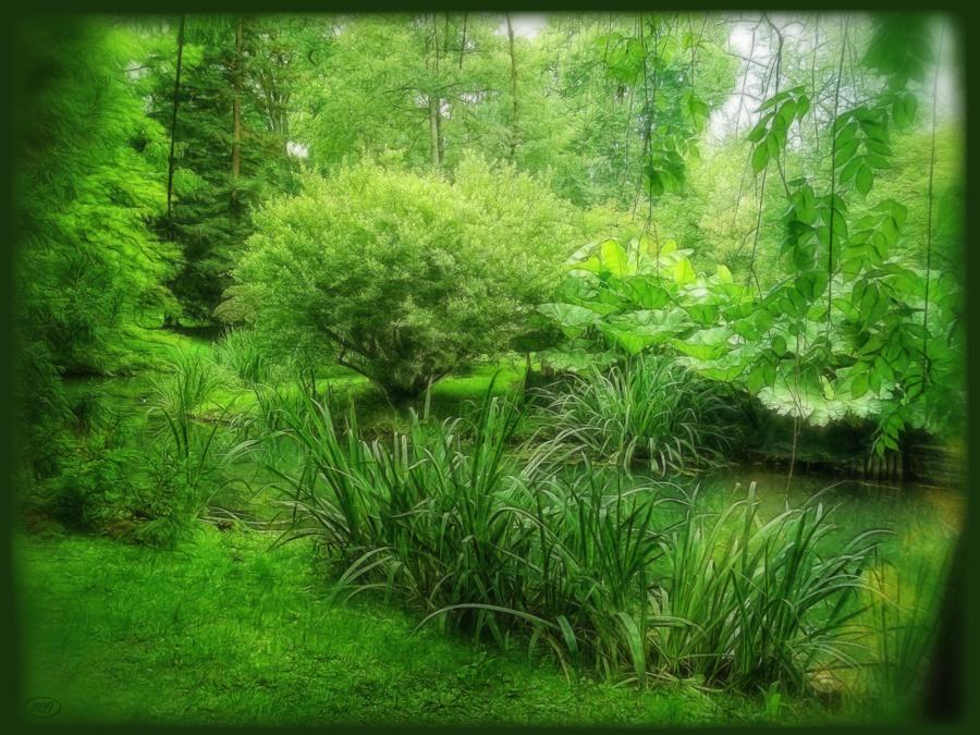 Ins Grüne eintauchen...