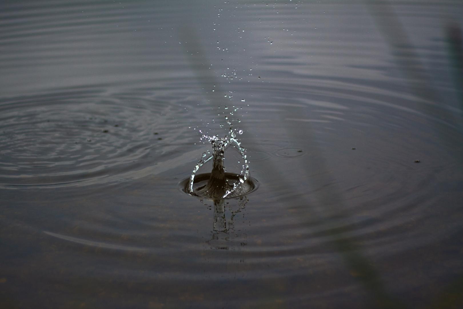 Ins Wasser fällt ein Stein...