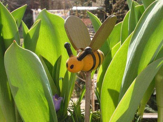 Insektenflug durch Tulpendschungel