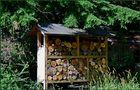 Insektenhaus von HelgaH