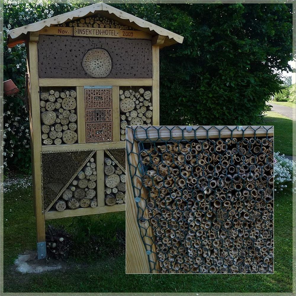 * Insektenhotel *