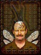 Insektenmann Kilian