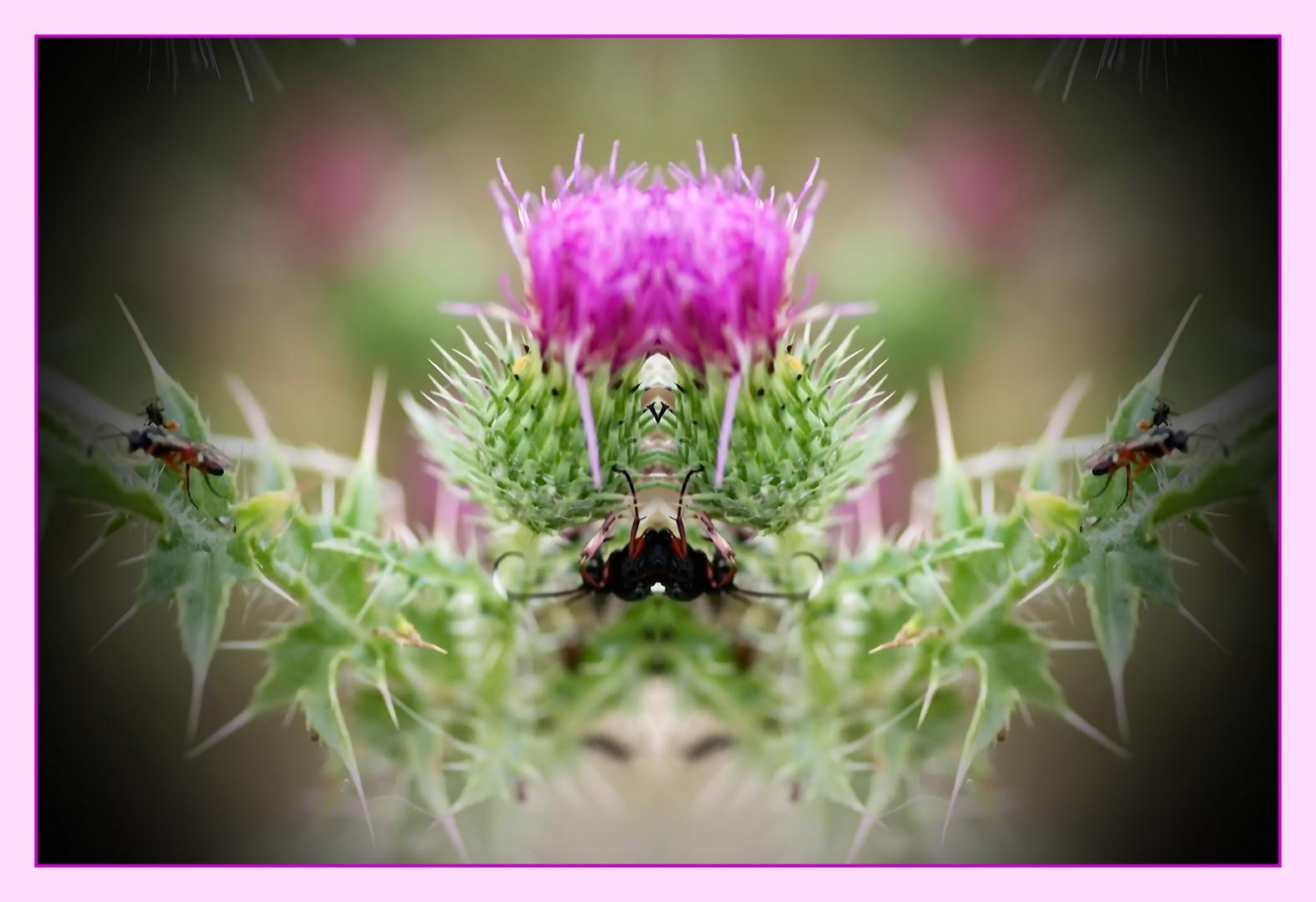 Insektenturnen