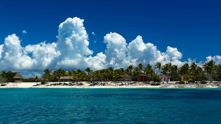~~~ Insel der Träume ~~~