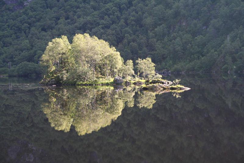 Insel im Fjord (Norwegen)