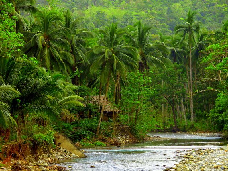 Insel Panay