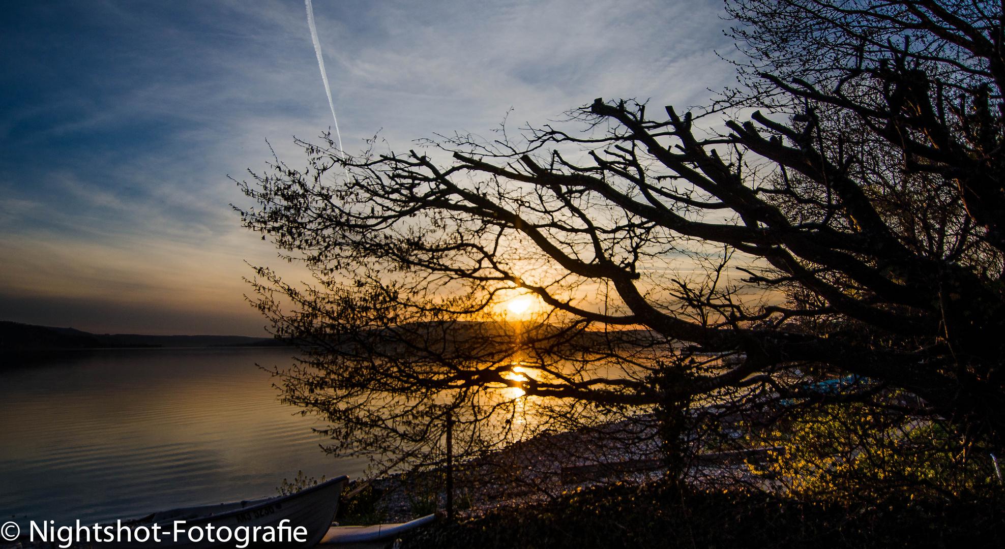 Insel Reichenau 1
