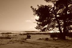Inselblick im Winter 2012