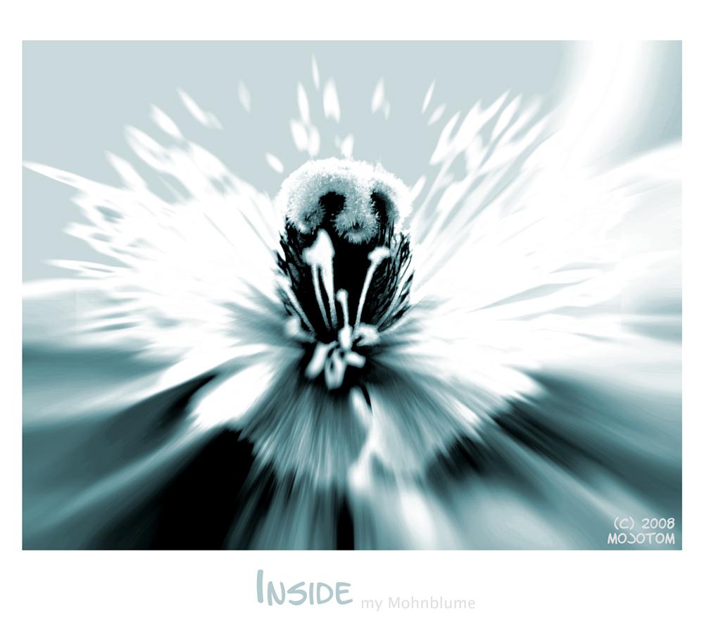Inside...