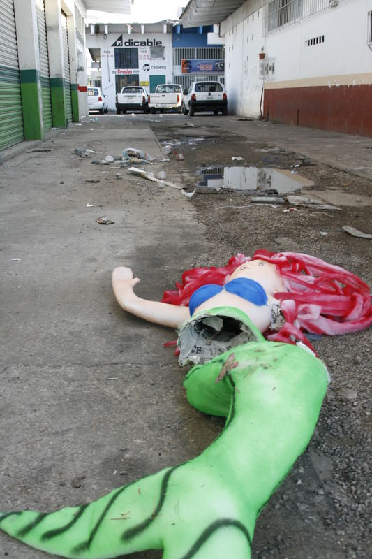 Insólito asesinato en un callejon.
