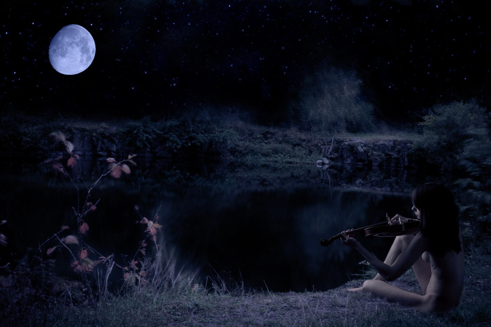 Inspiration im Mondlicht