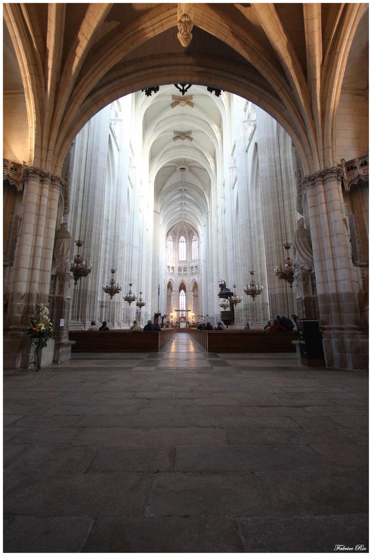 Int rieur de la cath drale saint pierre et saint paul de - Agenceur d interieur nantes ...
