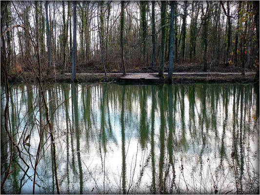 INTERMEDE - 1 - Bois Notre Dame en Hiver .