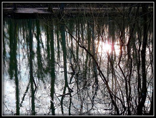 INTERMEDE -2 - Bois Notre Dame en Hiver .