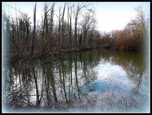 INTERMEDE - 7 - - Bois Notre Dame en Hiver .