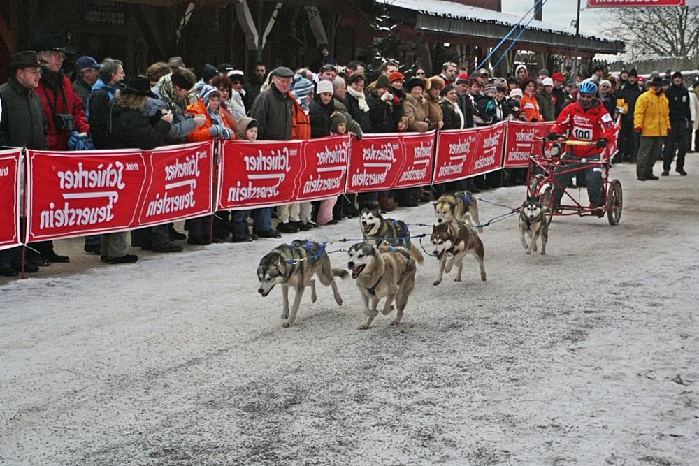 Internationales-Schlittenhunderennen und Start