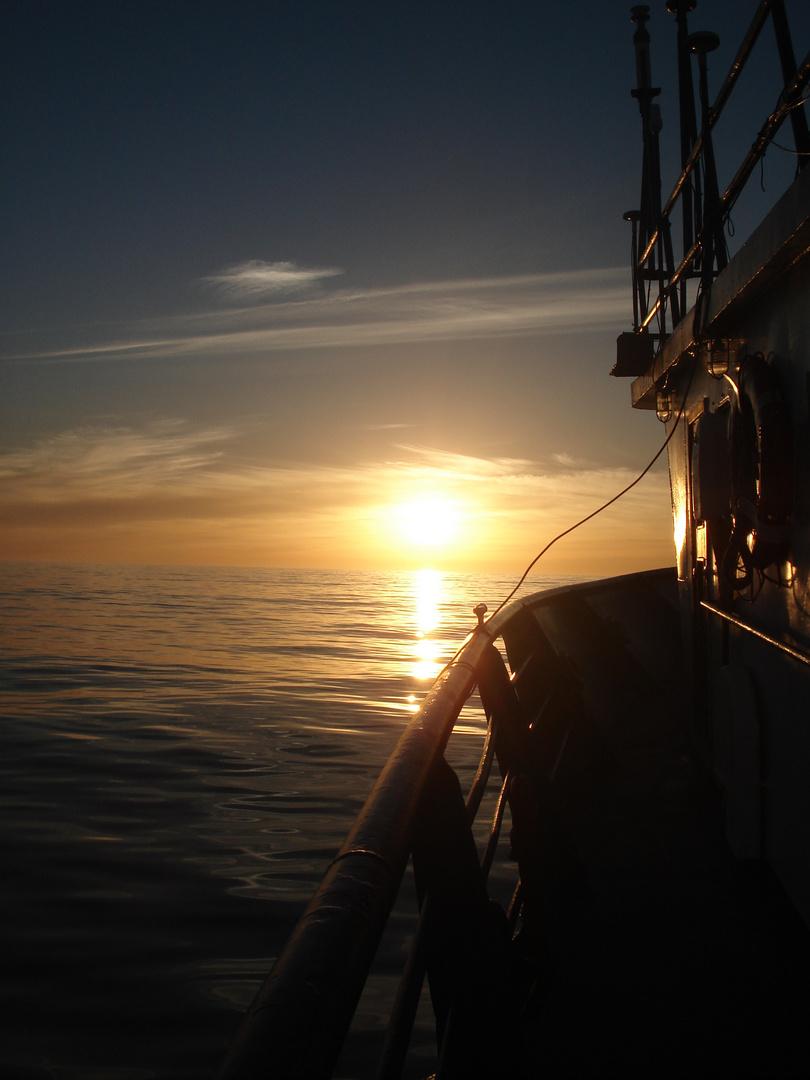 Into the ocean...